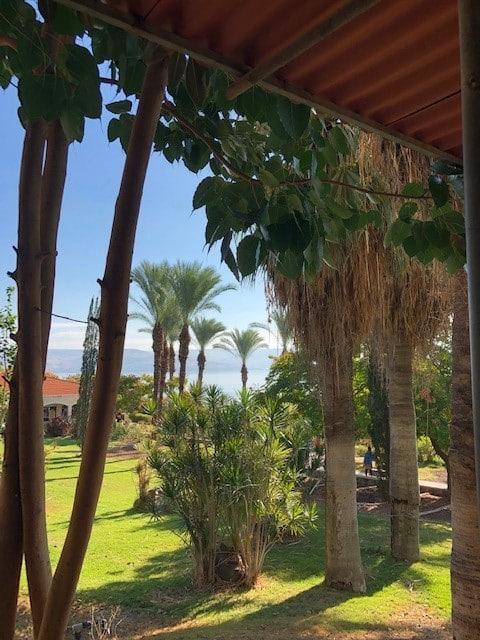 Sea of Galilee 12